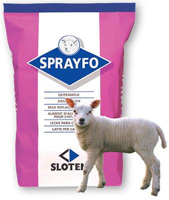 SprayFo Primo Lamb Milk Replacer