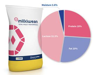 Milkiwean Yoghurt