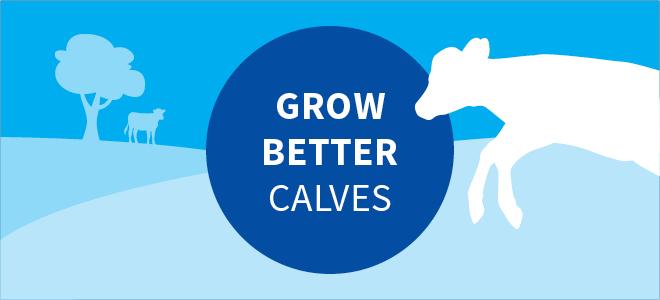 Grow better calves with AgriVantage