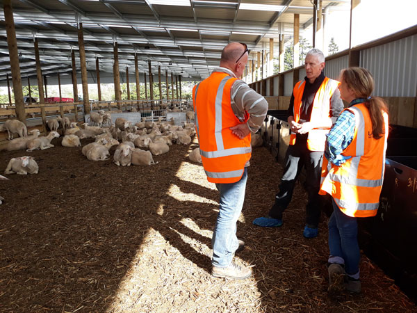 AgriVantage's-Warren-Tanner-with-Spring-Sheep-Milk-Monavale-Pilot-Farm-Cambridge-web